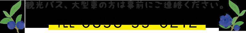 観光バス、大型車の方は事前にご連絡ください。TEL 0858-55-0212